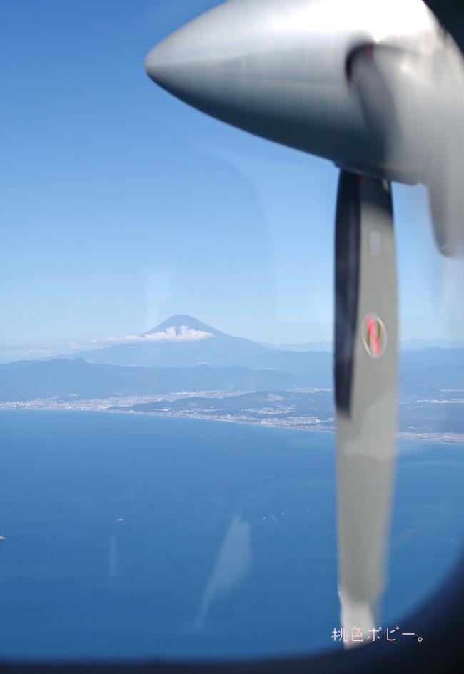新島IMGP9291