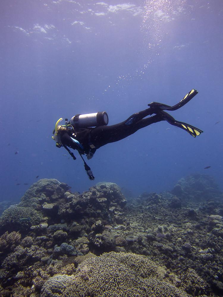 潜水员的水下潜行