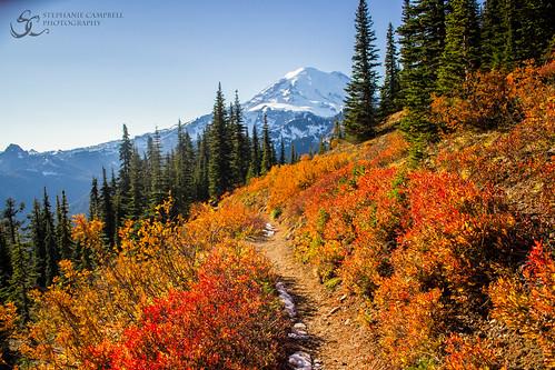 Naches Peak Trail, Chinook Pass, WA