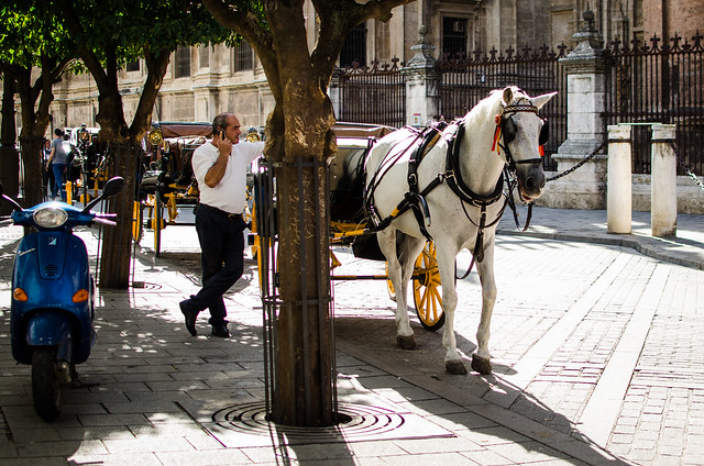 A horse and carriage wait for their next customer outside of Seville's massive Gothic Cathedral.