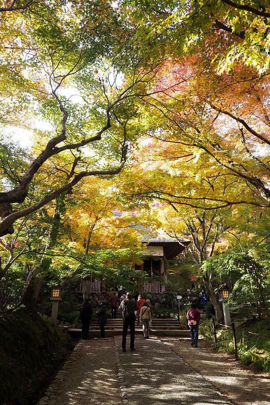 常寂光寺 | 京都嵐山