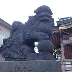 狛犬探訪 堀之内三輪神社 阿吽とも子連れ 玉も持たれている