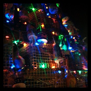 Close up of the Lobster Pot Christmas Tree #lobsterpot #lights #gloucester #home