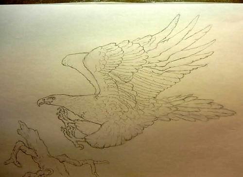 Mercanti Wedge-tail Eagle design