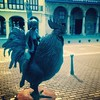 Naked Woman (but for her boots) Riding a Rooster & Armed with a Fork #plazaViejaHabana #wewereneverthere