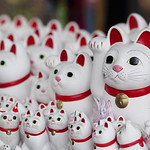 Some of Gotokuji's maneki neko...