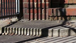 Church Fence Shadows