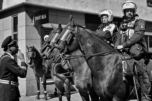 The District Constable Bängan Lagerblad and the cavalry