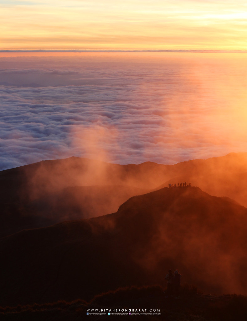Mount Pulag Kabayan Benguet sunrise sea of clouds