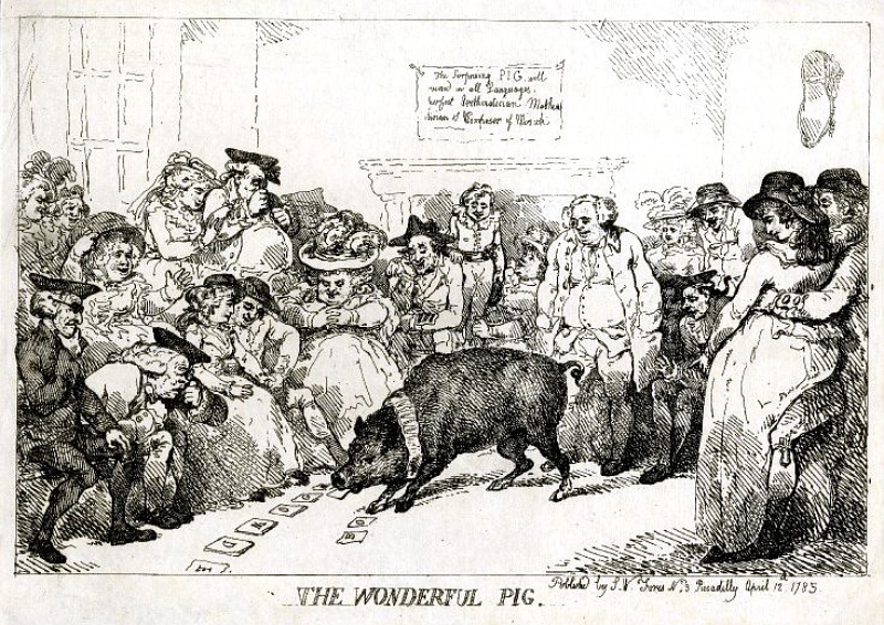 Rowlandson,_The_Wonderful_Pig,_1785-800px