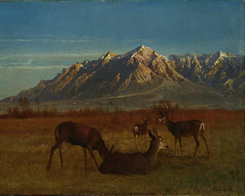 Albert Bierstadt - Deer in Mountain Home (1879)