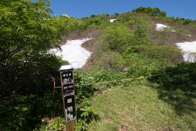 20160611-焼石岳-0293.jpg
