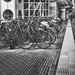 Bikes & Lines