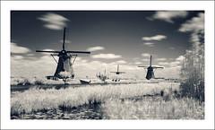 Kinderdijk (IR)