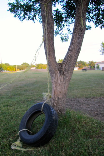 tired tire swing