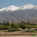 Mountain Views from Leh to Likir - Ladakh, India