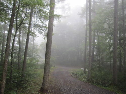 霧が立ち込めて・・・2013.9.15 by Poran111
