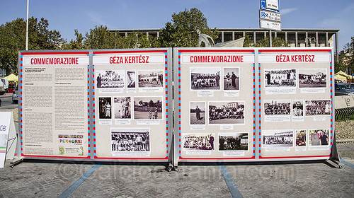 Omaggio a Géza Kertész: l'Eroe Rossazzurro$