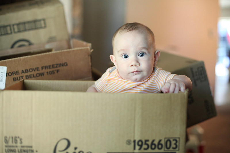 Skylar in a box