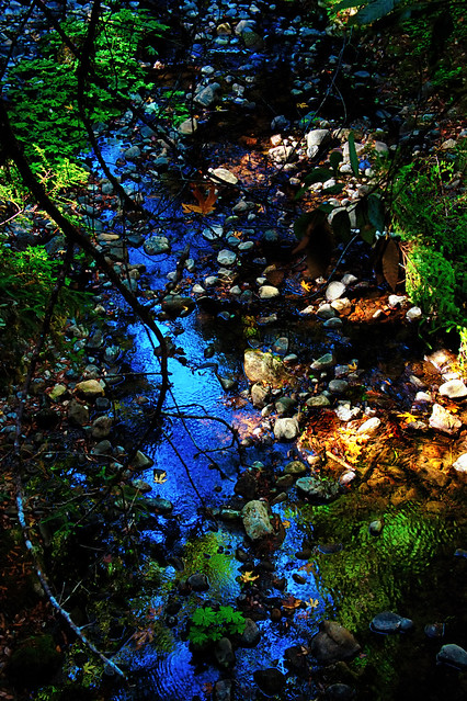 Creek Blue