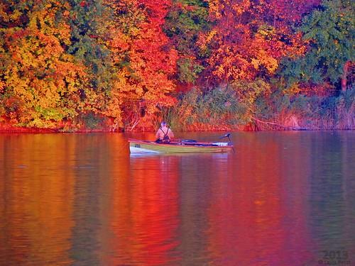 autumn nature canon landscape geotagged hungary hd természet magyarország ősz kaposvár gravatarcompesztlajos lajospeszt