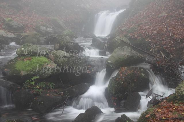 Parque Natural de Gorbeia/Gorbea #DePaseoConLarri #Photography 2228