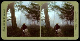 PILGRIM ON A FOREST ROAD -- Stepping Out from the Mist of Old Japan -- (Parallel View)