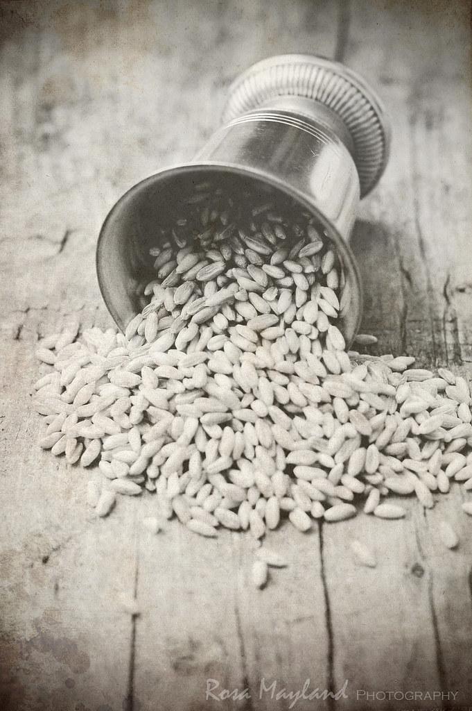 Precious Grains - Farro