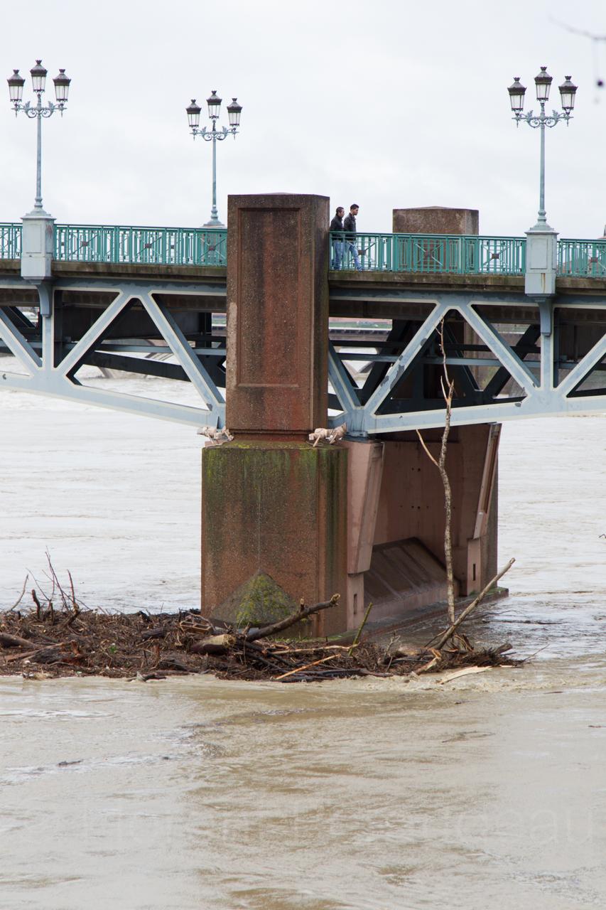 la Garonne en crue, 25 et 26 janvier 2014, Toulouse 12137250514_28273d9439_o