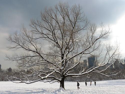 Let It Snow #18