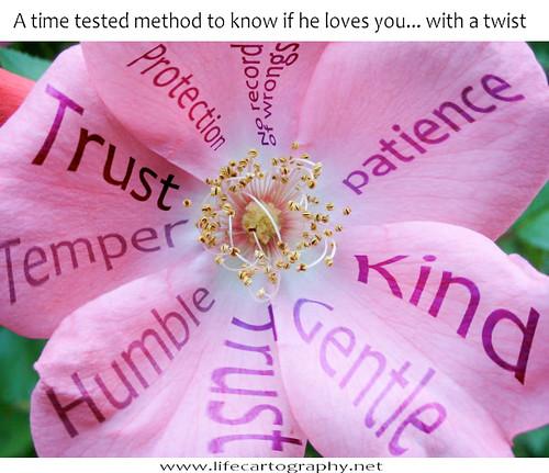 flower-test.jpg