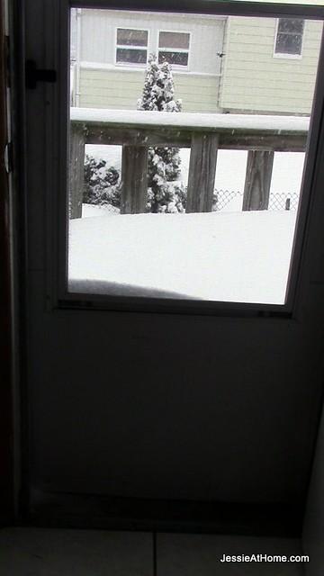 Back-Door-Snowpocalypse-14
