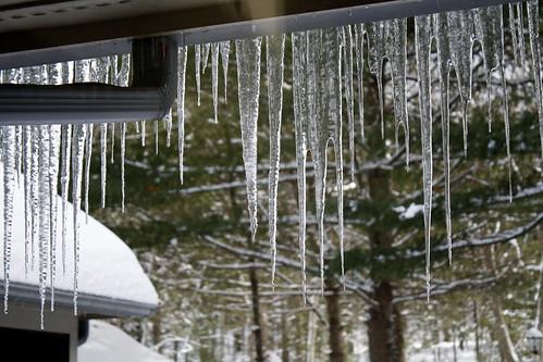 [321/365] Ice Ice Baby