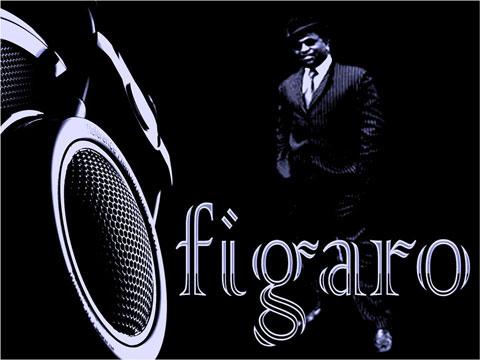FIGARO-480