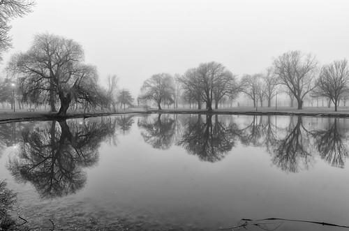 christmas water reflections nikon foggy oshkosh d7000