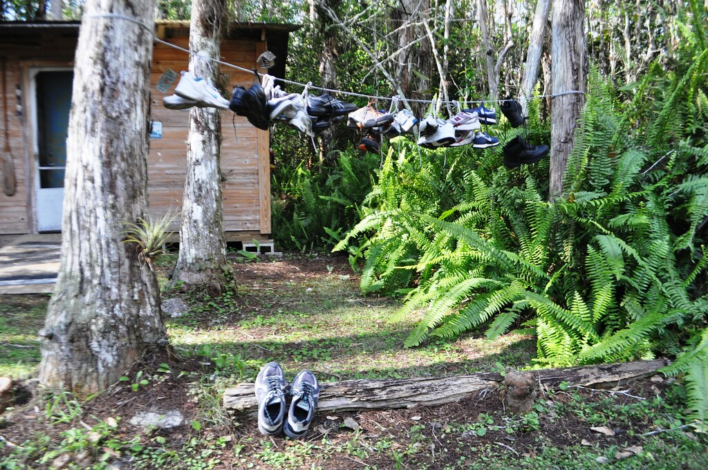 Shoes Drying Following a Swamp Walk