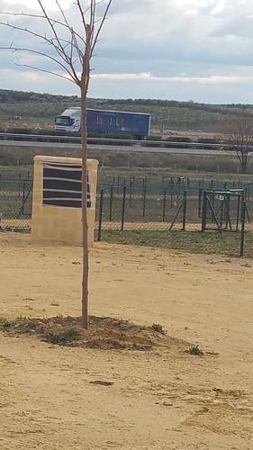 AionSur 16538242536_0e8cf52840_d Las primeras 48 licencias de uso de los Huertos Ecológicos se entregan con un reconocimiento a Encarnación Gallego Sin categoría Huertos sociales Arahal