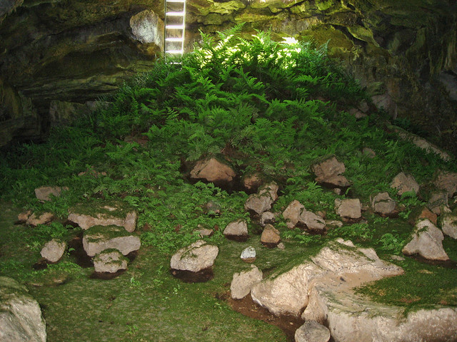 Fern Cave
