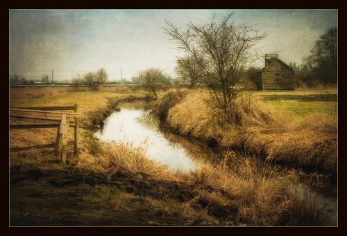 canada water creek painting landscape surrey textures deau oilpainting ruisseau birdrefuge peintureàlhuile réserveornithologique
