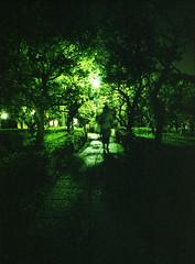 深夜の小道