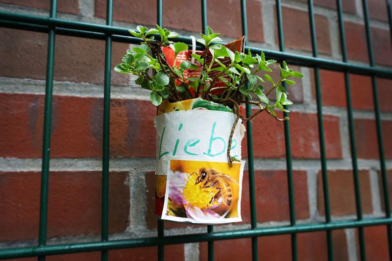 Urban Gardening Hamburg