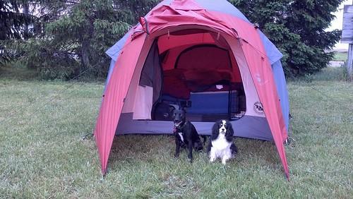 Campin'