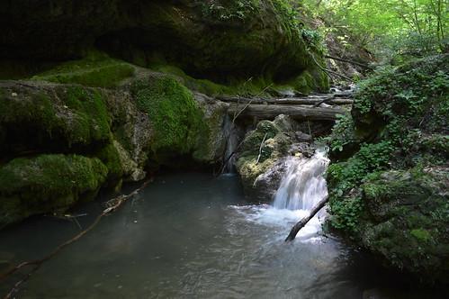 water rock creek hungary wasserfall falls ungarn weeping chute kirándulás dropping patak mecsek hongrie nyár tábor túra 2013 július víz hegység szikla vízesés sziklák hegymászás völgy péntek pénteki csepegő mecseki egyházközösségi gyermektábor óbányai