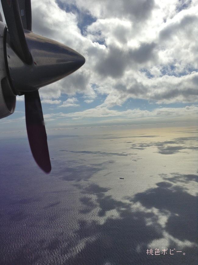 新中央航空IMG_0862