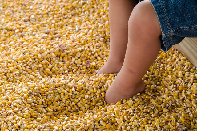 20131006-Farm-Visit-0737