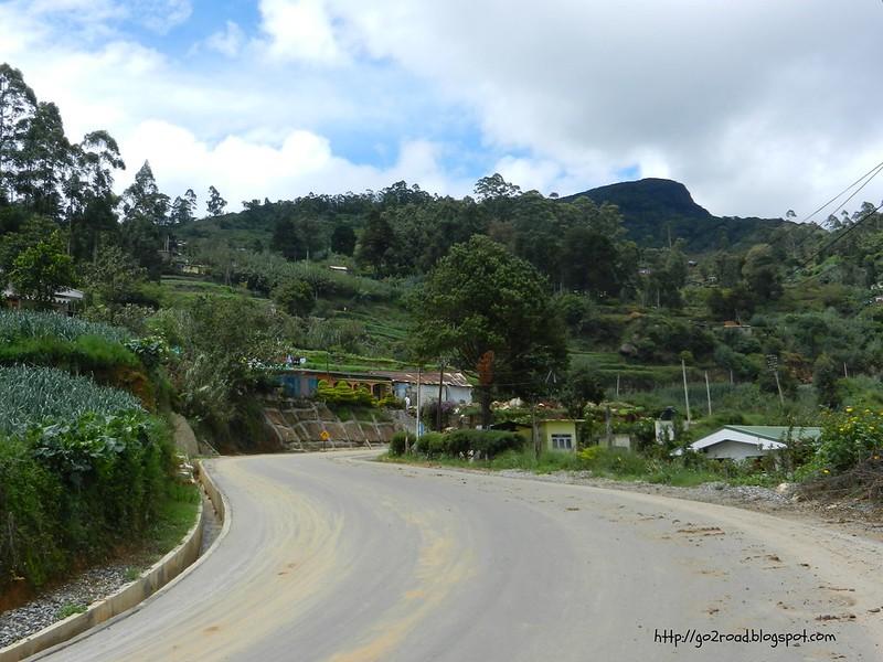 В горах. Дороги Цейлона