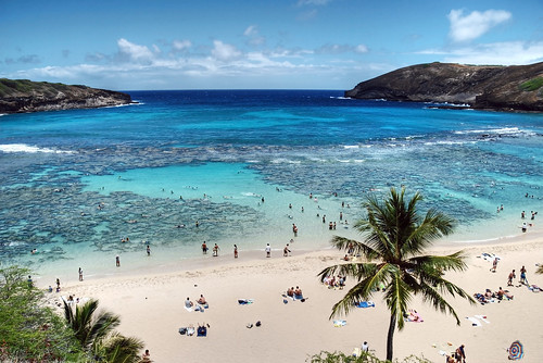 Hawaii - Beach - Oahu - Hanauma Bay - USA - HDR - 5
