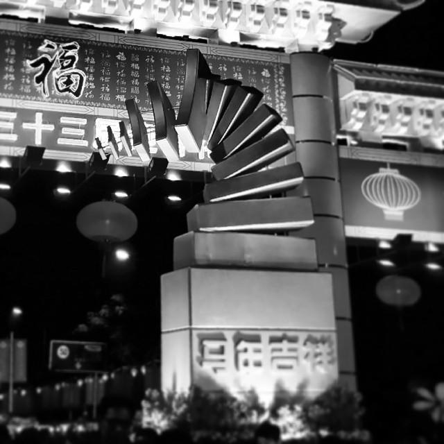 深圳花市,一半是警察,一半是賊。 #shenzhen #2014 #love