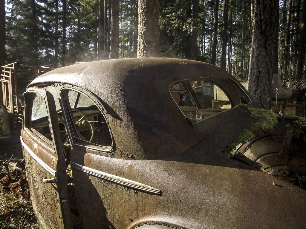 Steam Rising - Trust Salvage - Auburn WA