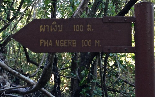 Pha Ngerb 100m